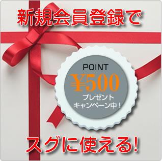 会員登録で500円分ポイントプレゼント