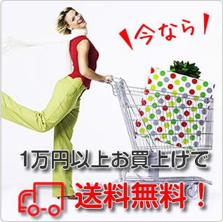 1万円以上お買い上げで送料無料です