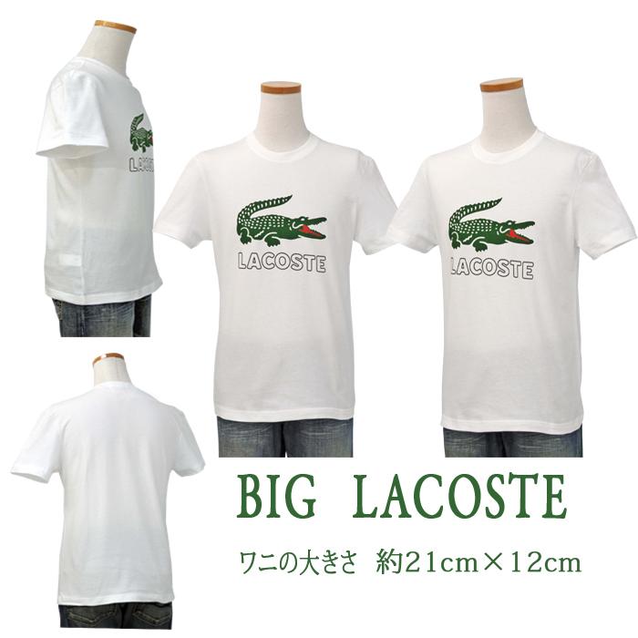 Lacoste ラコステ ビッグラコステ半袖プリントTシャツホワイト